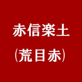 赤信楽土(荒目赤)